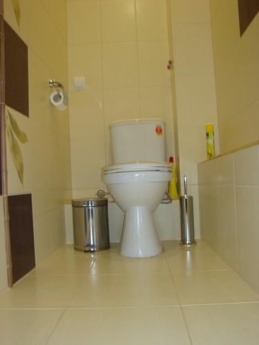 trahnuli-v-tualete-cherez-stenu