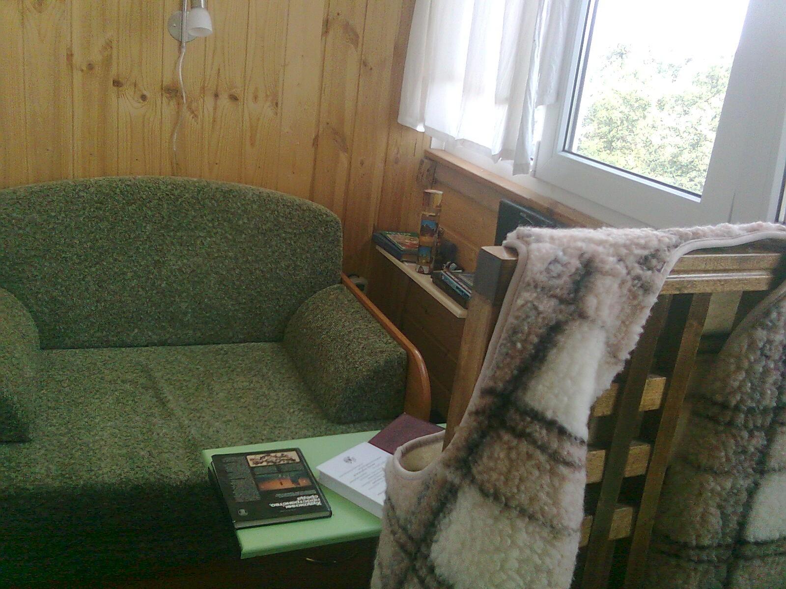 фото мини диванов классическая