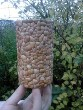 Резьба по берёзовой коре и мозаика из ореховых скорлупок