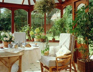 Размещение цветочно-декоративных растений в интерьере