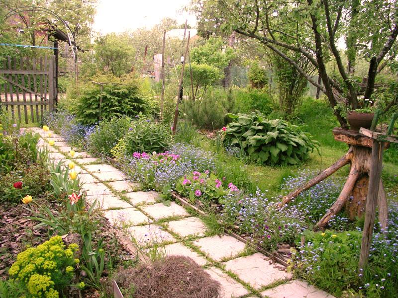 Красивый огород универсальный дом