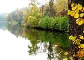 Дендрологический парк Тростянец