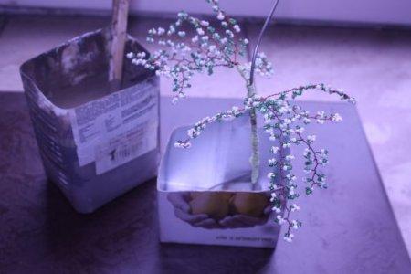 Яблоня из бисера деревья привлекли мое внимание на выставке.