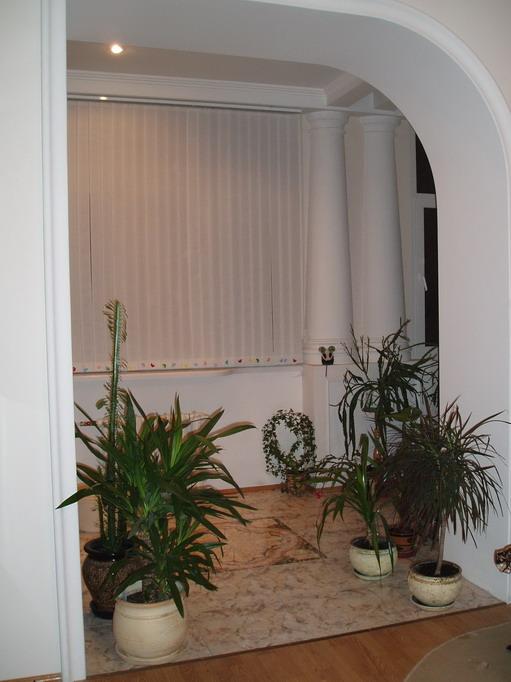 Домашние джунгли идеи для размещения комнатных растений в интерьере.