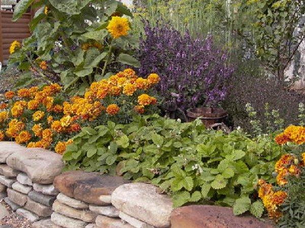 Общей стилистике сада, а следовательно, носить непринужденный