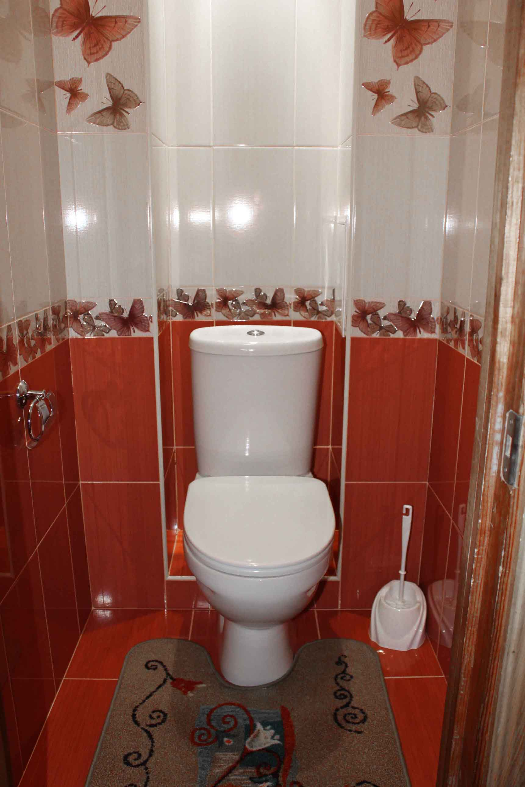 Просмотр онлайн в туалете 11 фотография