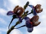 Именно весной зацветает замечательный цветок - ирис.  И действительно, этот цветок собрал в свою палитру все цвета...