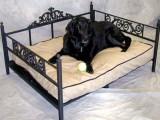 Стильная мебель для домашних питомцев
